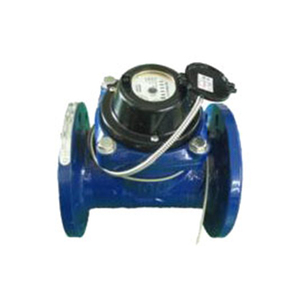 Direct Reading Remote Water Meter (DN50-DN500)